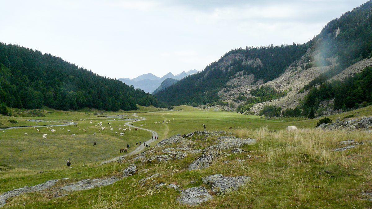 Vuelta Midi d'Ossau. Gave de Bious